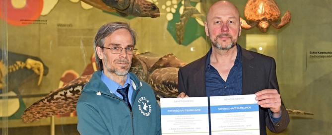Exhibit adoption hawksbill turtles Senckenberg 2017