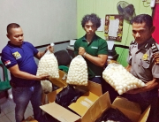 ProFauna in police office in Tanjung Redeb with confiscated turtle eggs