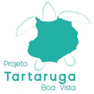 Projeto Tartaruga