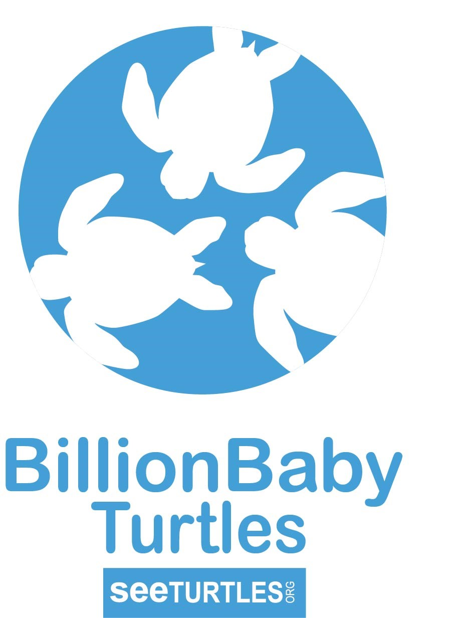 BillionBaby Turtles