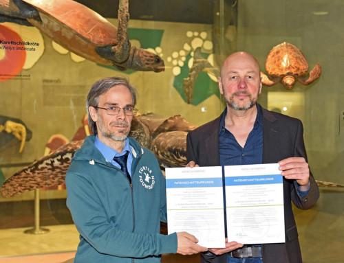 Turtle Foundation übernimmt Patenschaft für Meeresschildkröten-Exponate im Senckenberg Naturmuseum Frankfurt