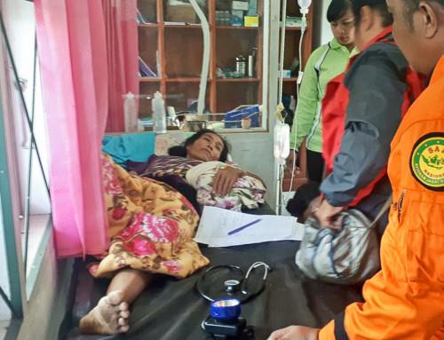 Massenvergiftung nach Verzehr einer Meeresschildkröte – Drei Menschen in Indonesien gestorben