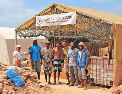 Turtle Times: Der Juni/Juli-Newsletter unseres Turtle Foundation-Teams auf Boavista, Kapverden