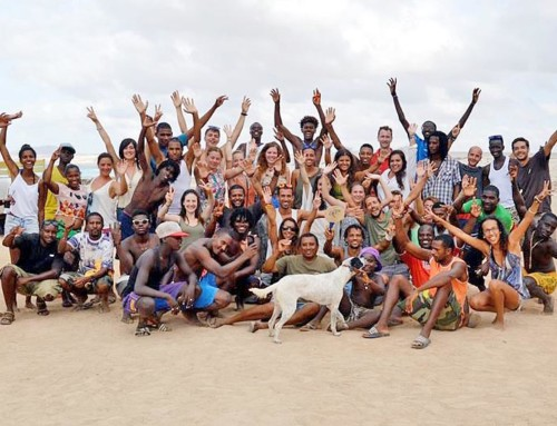 Turtle Times: Der August-Newsletter unseres Turtle Foundation-Teams auf Boavista, Kapverden