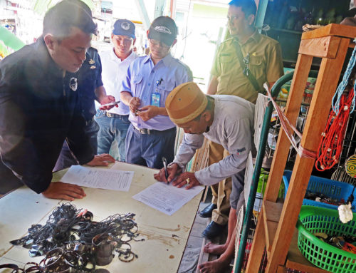 Hawksbill turtle souvenirs confiscated on Derawan, East Borneo