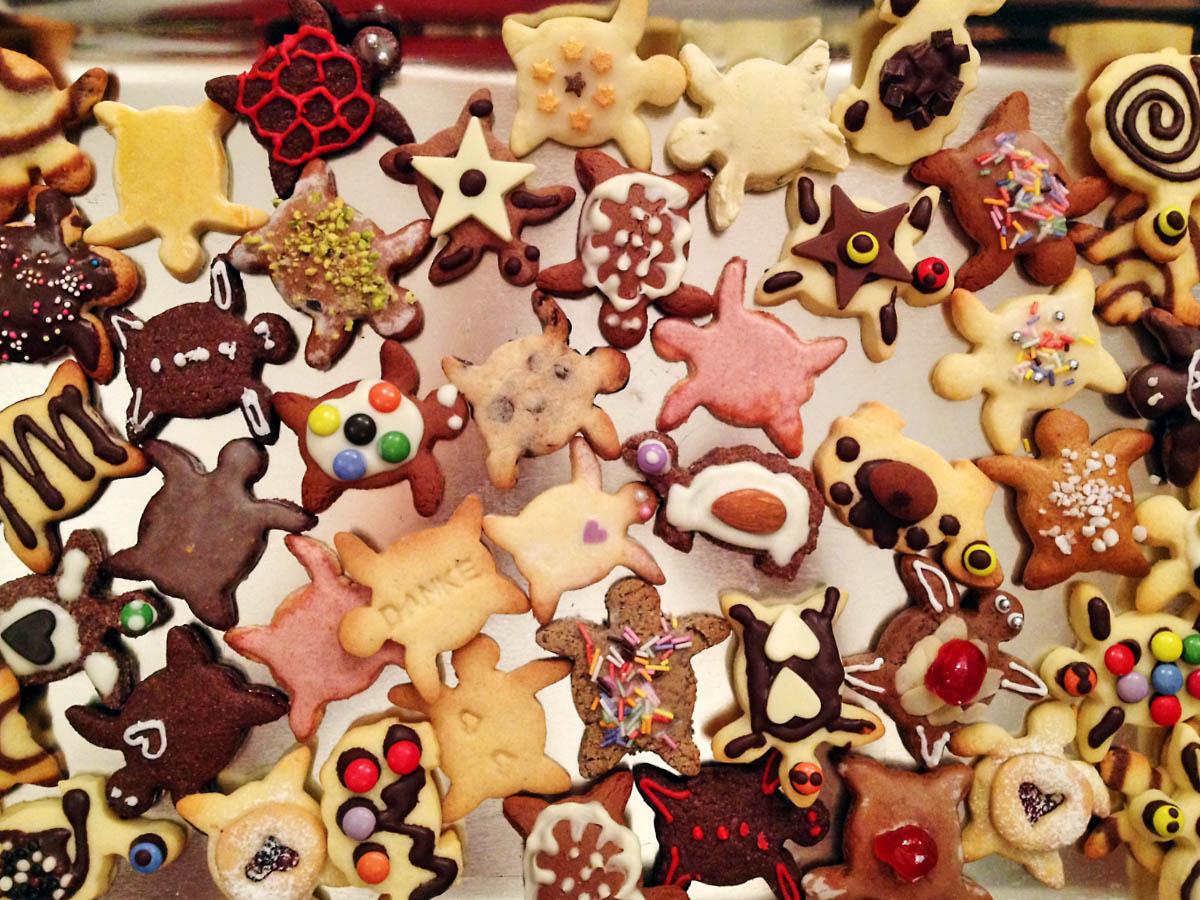 Turtle Christmas cookies