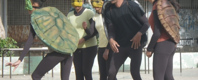World Turtle Day in Mindelo