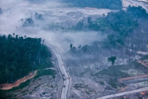 Forest destruction near Tanjung Redeb in the Berau regency