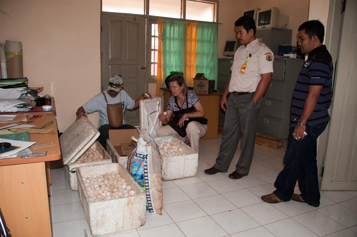 confiscated by police in Berau