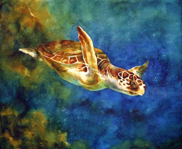 sea+turtle