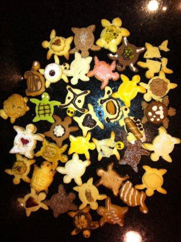 turtle+cookies