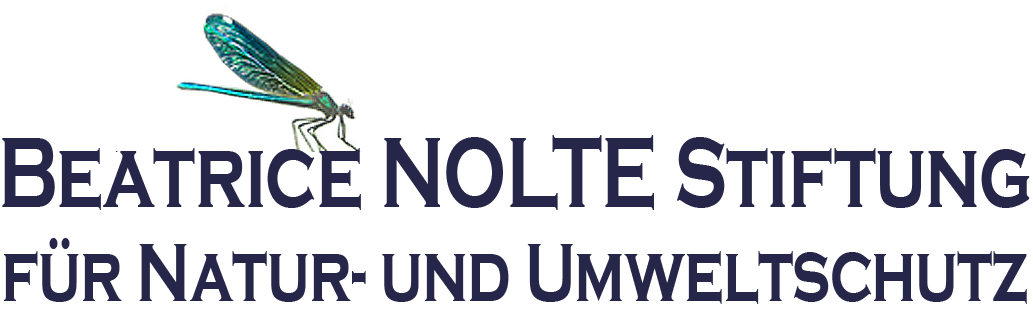 Beatrice Nolte Stiftung