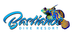 Logo Bastianos