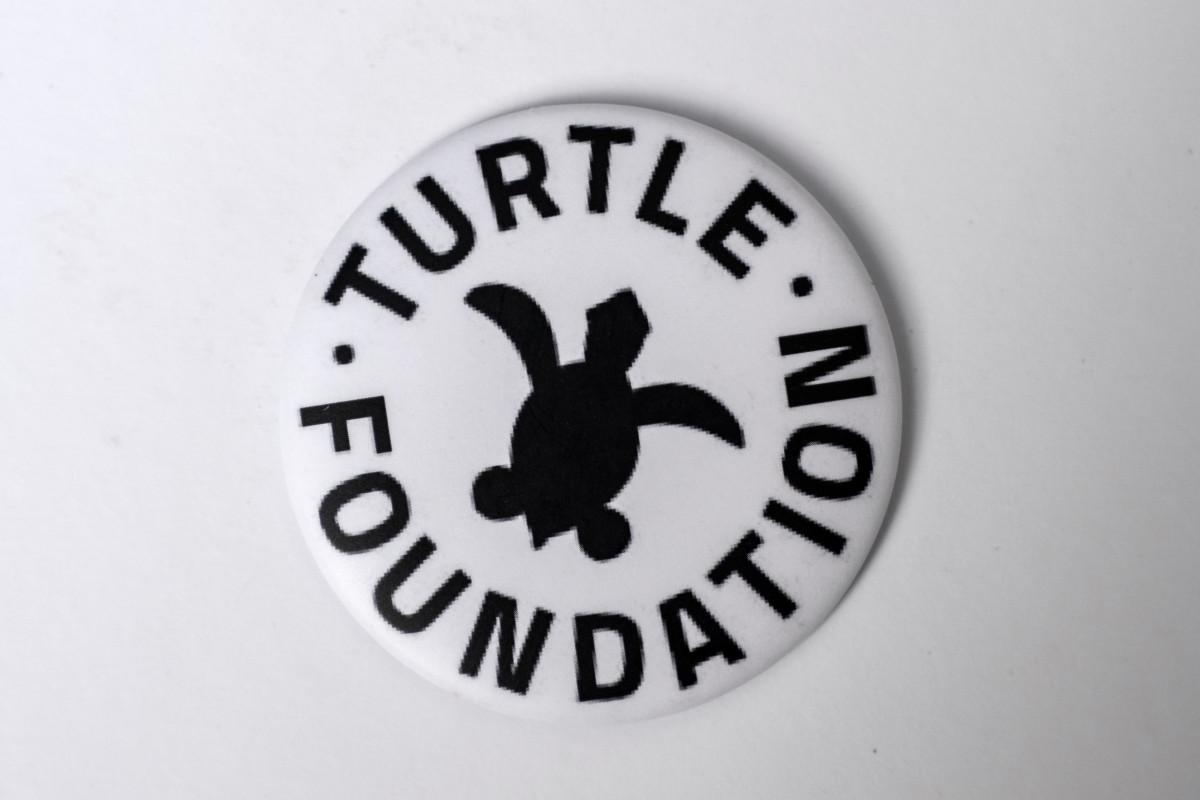 Kühlschrank Magnet Turtle-Foundation