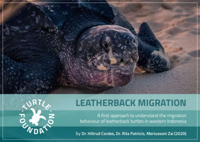 Read the complete leatherback mission report