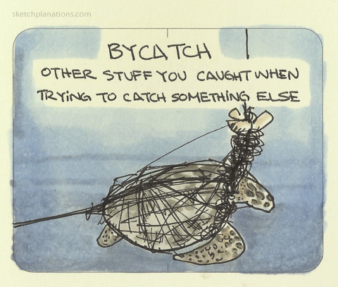 Bycatch by Scatchplanations